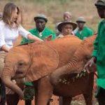 Involve all stakeholders in wildlife conservation, says Mrs Kenyatta